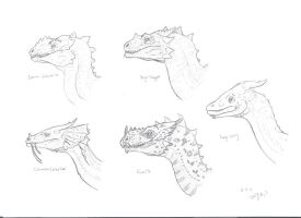 Temeraire Series Dragons Profiles by Amburo256