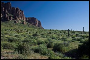 Arizona is green by Roland3791