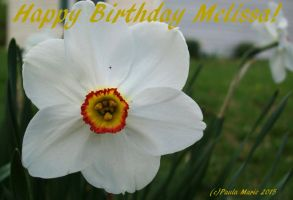 Happy Birthday Melissa by youlittlemonkey