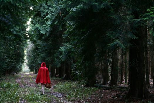The tale of Red Riding Hood by xessencex