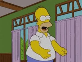 Homer - smart as a dolphin [gif] by BlutenderTod