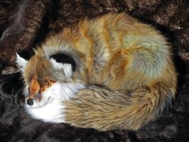 Red Tail in the Classic Fox-Ball by TeeganPurrington