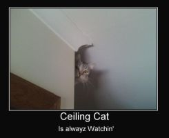 Ceiling Cat by MirrorMichael