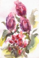 Tulips by Tote-Dietrich