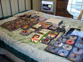 My Video Game Collection 2010 by elvenbladerogue