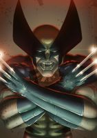 Wolverine 2012 by Juggertha