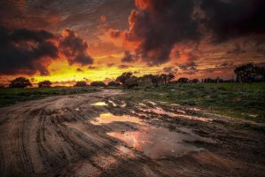 After the Rain by Levantera