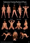 Submissive Pose Chart: Honour May by LexLucas