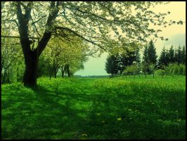 Spring garden of dreams by Andenne