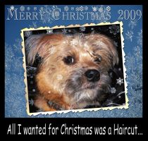 Merry Christmas From Wally... by krissybdesigns