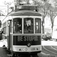 Be Stupid by du-la