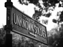 Tomb of the Unknown Soldier by bokchoykaraoke