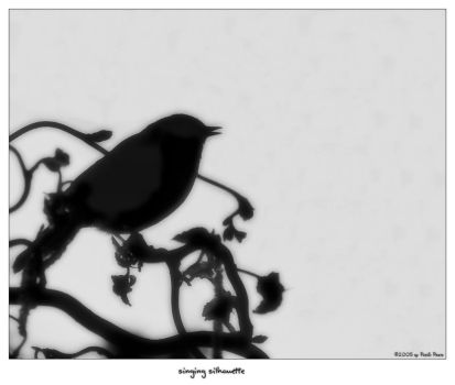 singing silhouette by oetzy