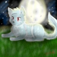 Cat Basking in Moonlight by xPetalstormx