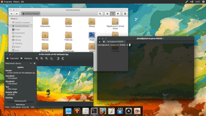 Gnome-panel with Gala desktop 13.04 by Dolsilwa