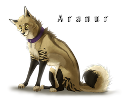 Aranur by Mori-No-Kami