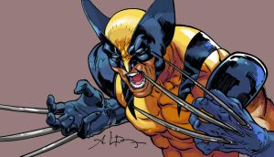 card color wolverine by andreibressan