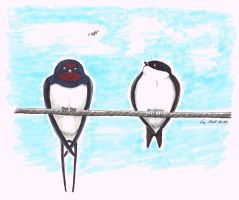 August - Swallow and Martin by DombiHugi