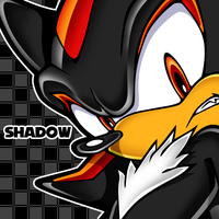 Shadow the Hedgehog by OrangeCoatSale