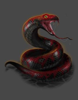 DC: Black Rock Viper by GraphicGeek