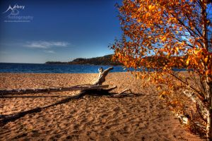 HDR Beach 2 by Nebey