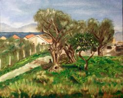 Olive picking by byron7