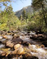 Little Cottonwood Creek Summer by houstonryan