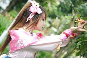 Samurai Warriors - Oichi by Xeno-Photography
