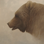 Grizzly - Head Study by Misted-Dream