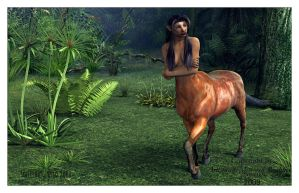 Wild Centaur by something-wild