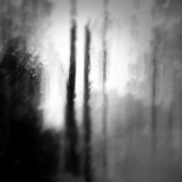 .:Trees and Tears:. by AnonimousDreamer