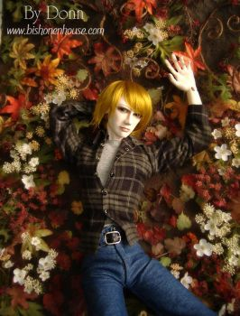 Fall by BishonenHouse