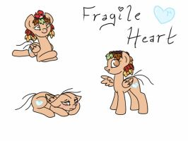 Fragile Heart Ref Sheet by angrykarin666