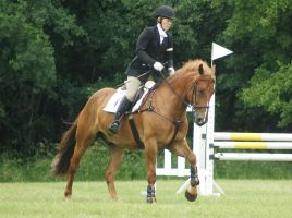 Eventing Horse Show Stock 15 by almondjoyy5
