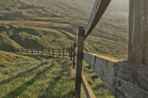 Fence by Preachman