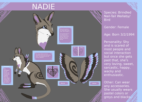 New Nadie Reference Sheet .:2011:. by Becksterz