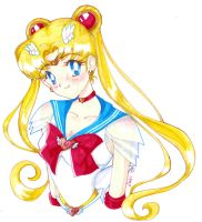 Super Sailormoon b by GreenInkling