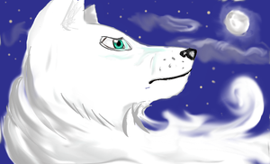Spirit of the White Wolf by Okhorse21