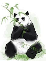 For Loser77703: Panda by 626elemental