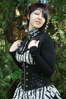 Step in time Steampunk 4 by Noirin-Stock