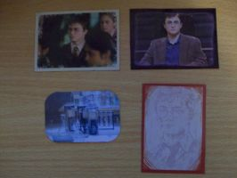 Harry Potter magnets by ToxicChick