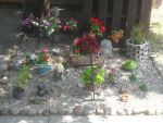 Rock Garden by MyLoveForYouEternity