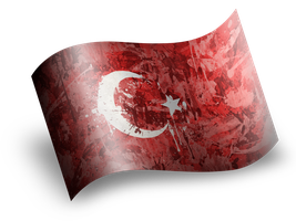 Turkish Flag by Theophobus