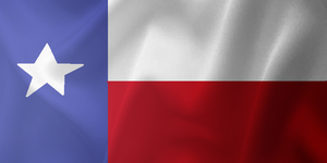 Texas Flag by ZhaneAugustine