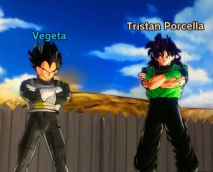 Me And Vegeta by tristananimation