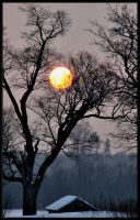 Cold Sun... by Yancis