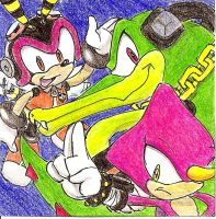 Team Chaotix by DabyHedgehog