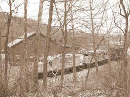 Negley, Ohio Part 2 by LDLAWRENCE