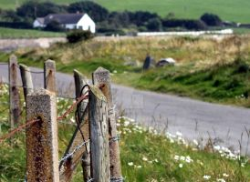 Country Lane by Emz-Photography