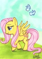 Fluttershy by skardash